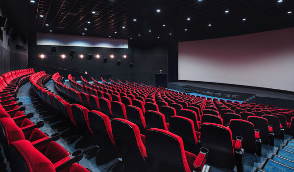 EVERYBODY WANTS TO GO WATCH MOVIES AT THE CINEMA NOW
